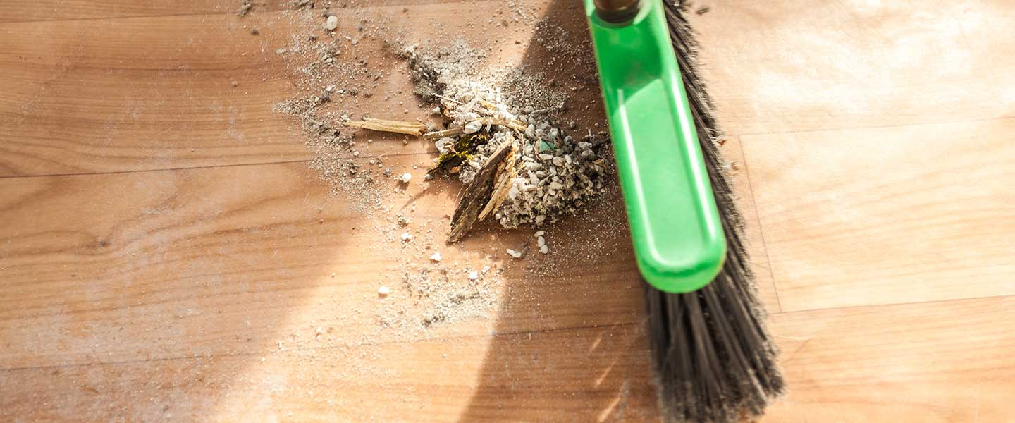 A broom that is sweeping a mess up off the ground during house cleaning